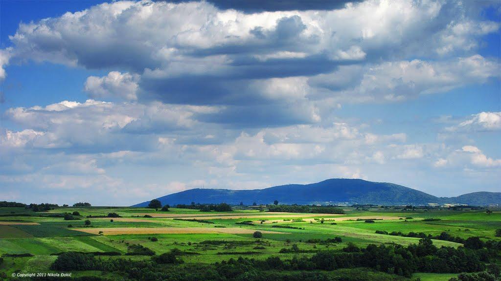 kosmaj-panoramio.jpg - 76,81 kB